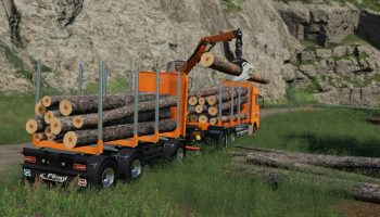 FLIEGL TIMBER WOOD TRAILER V1.0.0.1 для Farming Simulator 2019